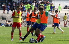Selection day in Gabala - Photogallery